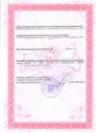 Лицензия МЧС России стр. 2
