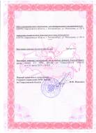License of the Russian Emergencies Ministry, Page 2